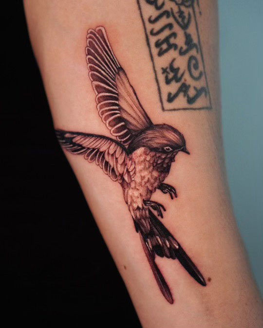 Hummingbird by Lyn